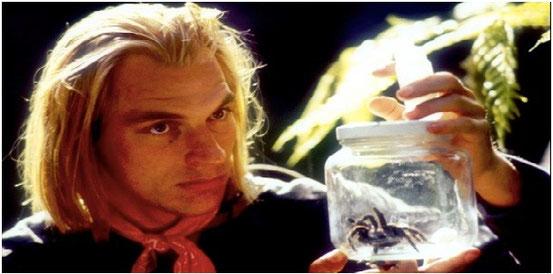 Arachnophobie de Frank Marshall - 1990