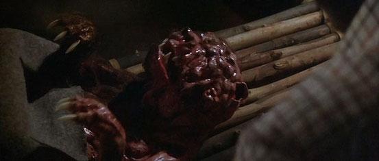 Prophecy - Le Monstre Est Né de John Frankenheimer - 1979 / Horreur - Animal Tueur