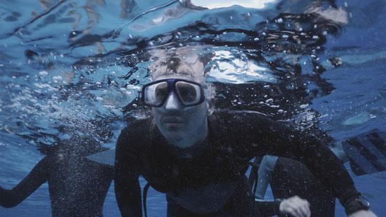 The Reef de Andrew Traucki - 2010 / Horreur - Animal Tueur