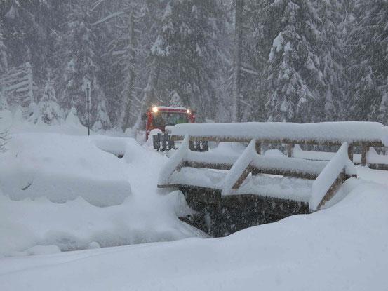 Loipenfahrzeug Harz
