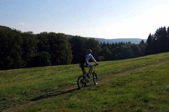 Bad Harzburg Mountainbiken Nähe Molkenhaus