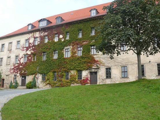 Mit Wein überwuchertes Gebäude von Schloss Ballenstedt