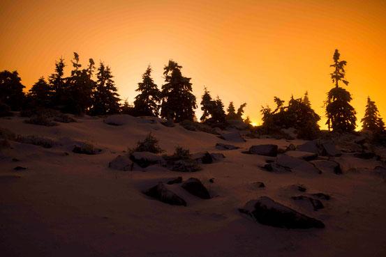 Der Brocken im Winter. Foto: Bernd Rischel