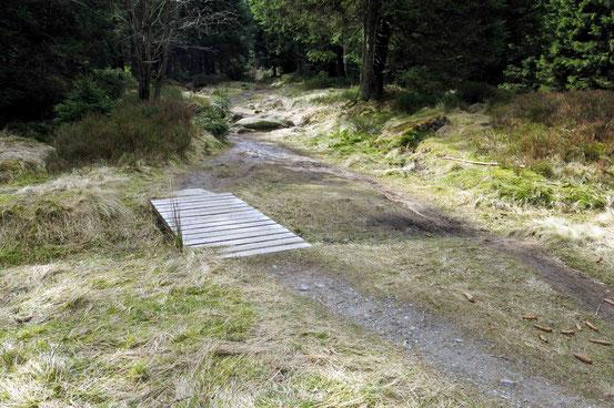 Weg von Oderbrück zum Achtermann