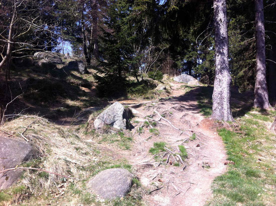 Wurzel-Pfad: Anstieg zur Kästeklippe
