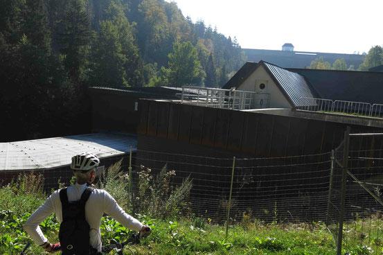 Mountainbiken Eckerstausee
