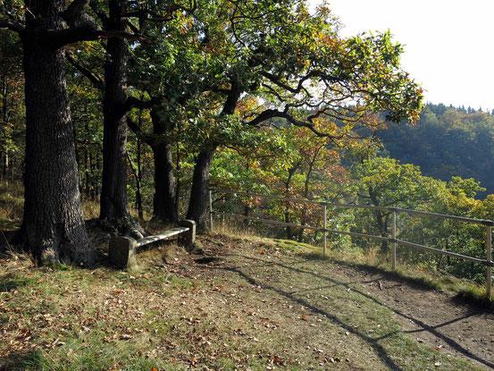 Wanderung vom Hexentanzplatz/ Thale aus: Stempelstelle Nr. 70, Prinzensicht, mit Laubbäumen, Bank, teilweise Blick ins Tal