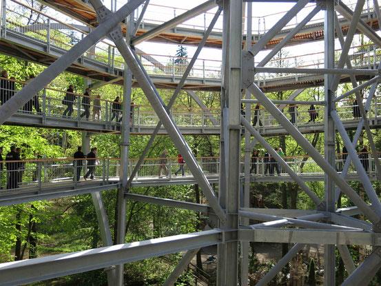 Baumwipfelpfad Bad Harzburg: Innenansicht des Eingangsturms aus Stahl