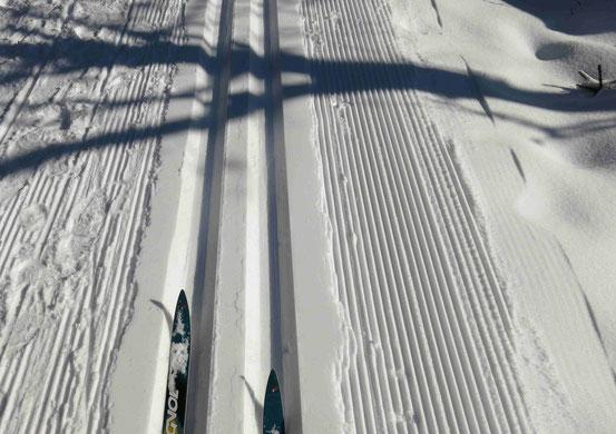 Loipe im Harz mit Skispitzen, Nähe Torfhaus