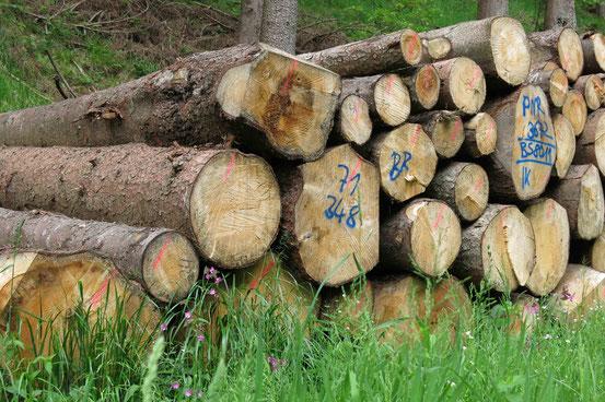 Holzstapel, Harz