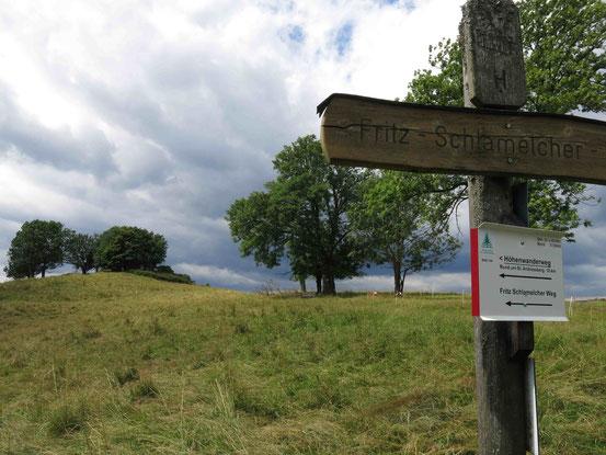 Höhenwanderweg Sankt Andreasberg: am Fuße des Galgenbergs