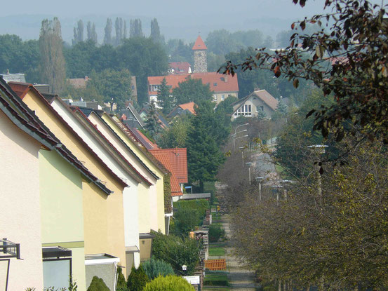 Ortsrand von Ballenstedt, Blick vom Selketal-Stieg