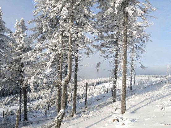 Skigebiet Wurmberg: Blick vom Sonnenhang