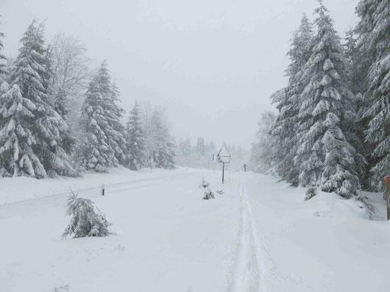 Harz Schnee