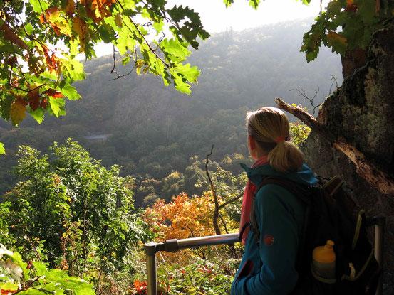 Aufstieg zum Hexentanzplatz von Thale/ Harz aus. Blick auf die umgebenden Wälder, blonde Frau mit Pferdeschwanz im Vordergrund