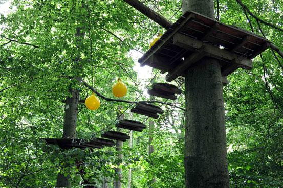 Klettern Erlebniswald Ilsetal