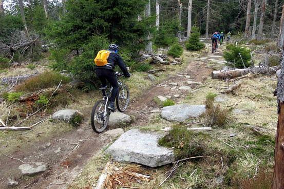Weg Oderbrück Achtermann Mountainbiker