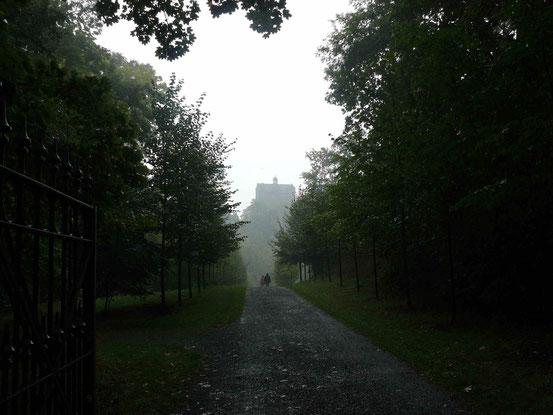 Weg mit Blick auf das im Dunst liegende Schloss Ballenstedt.