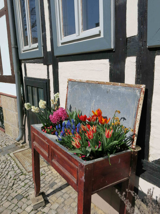 Blumen, Quedlinburg