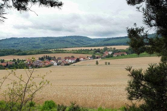 Rundwanderweg Teufelsmauer ab Blankenburg. Halbzeit. Blick auf Getreidefelder und auf Häuser im Ort Timmenrode.