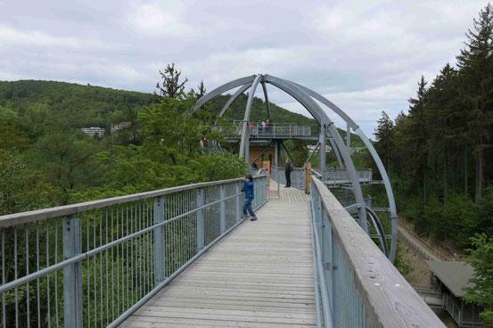 Einstiegskrone Baumwipfelpfad Bad Harzburg