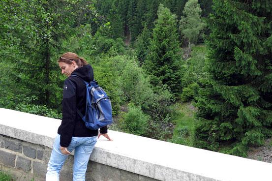 Brücke, Okerstausee