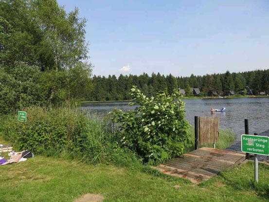 Oberer Hausherzberger Teich, Clausthal-Zellerfeld, Waldschwimmbad, Freibad