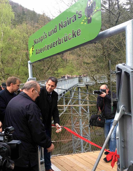 Hängebrücke, Baumwipfelpfad, Bad Harzburg, Olaf Lies