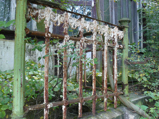 Verrostetes altes Gitter, von dem die Farbe abblättert, in Mägdesprung/ Harz