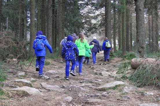 Wanderung Familien Oderbrück Achtermann