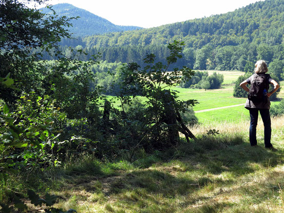 Aussichtspunkt am Steinway-Trail. Blick auf Weiden und Fichten. Wanderin mit Rucksack von hinten.