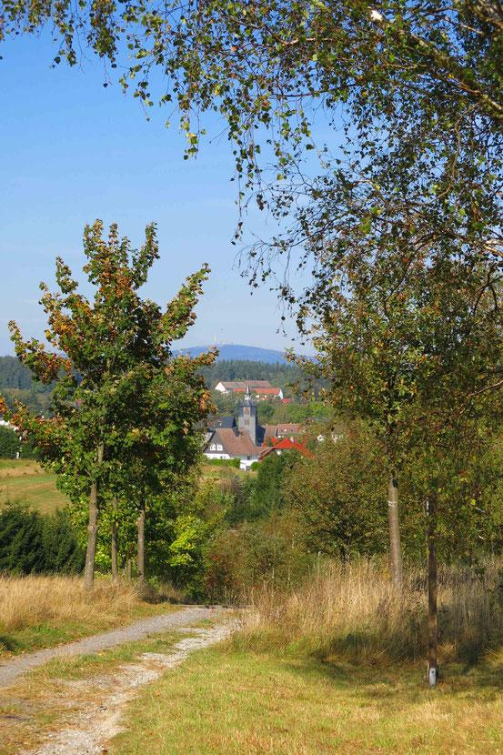 Bergwiesen-Lehrpfad Benneckenstein