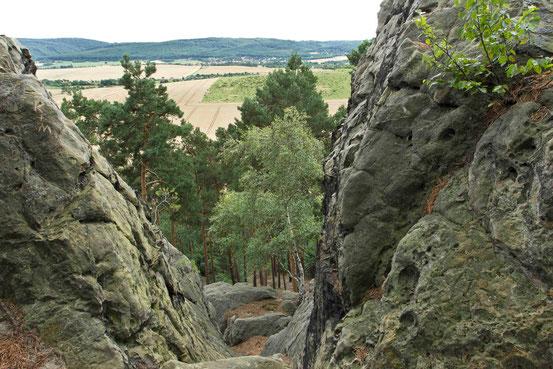 Wanderweg Teufelsmauer/ Harz. Hohe Felsen am Kammweg.