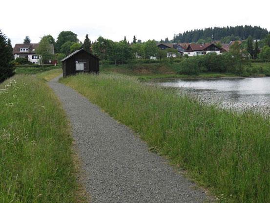 Damm bei Clausthal Zellerfeld