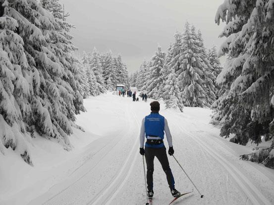 Langlaufen im Harz: Loipe am dreieckigen Pfahl