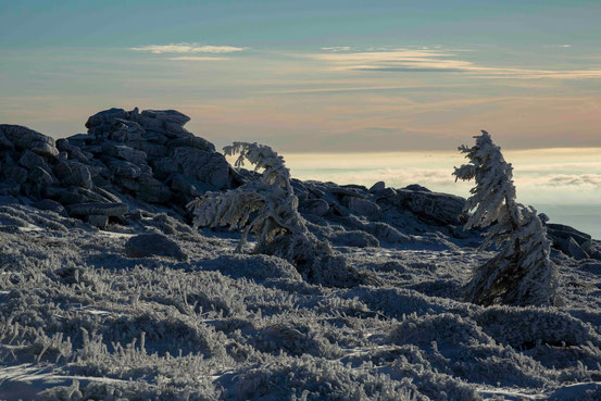 Brocken/ Harz im Winter