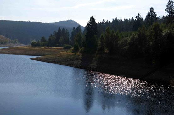 Glitzerndes Wasser Eckertalsperre
