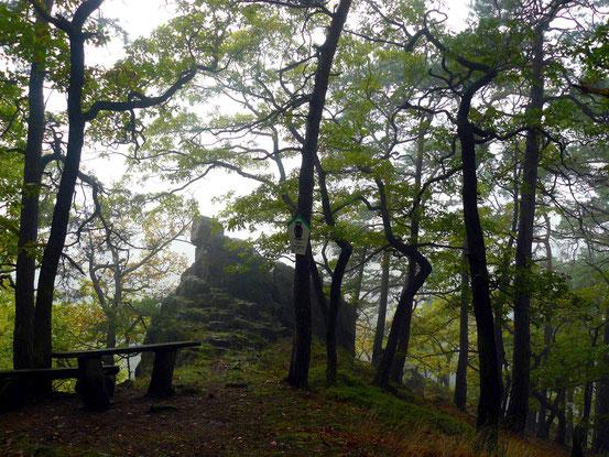 Anhaltinischer Saalstein, Bad Suderode, Stempelstelle Wanderpass