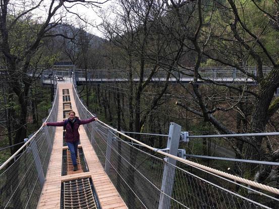 Hängebrücke, Baumwipfelpfad, Bad Harzburg