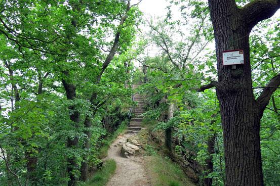 Aussichtspunkt Bülowhöhe, Rosstrappe, Thale