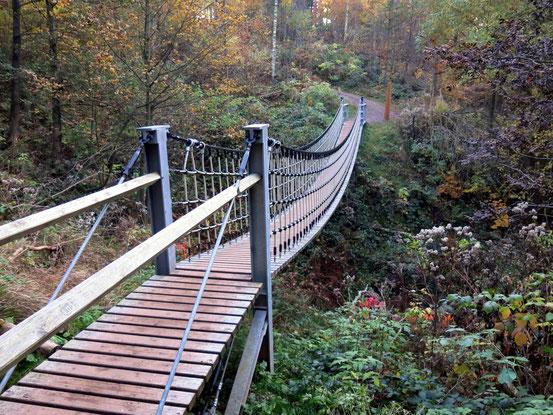 Hängebrücke am Ende des Erlebnispfads im Weltwald/ Harz