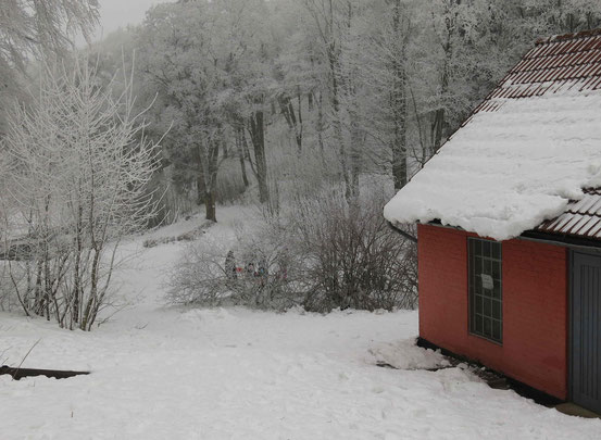 Rodeln in Sankt Andreasberg
