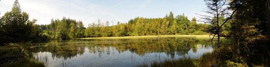 Seen bei Breitenbuch - ein herrliches Fleckchen Odenwald!
