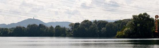 Blick zum Odenwald