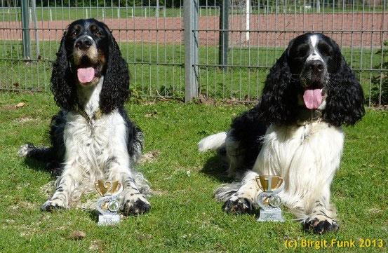 Cooper & Laurin mein Lieblings schwarz-weißer, der heute eine gute und vor allem leise Prüfung gelaufen ist.