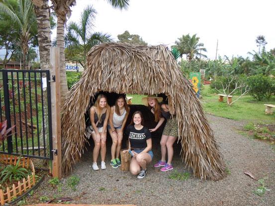 Auf der Ananas Plantage
