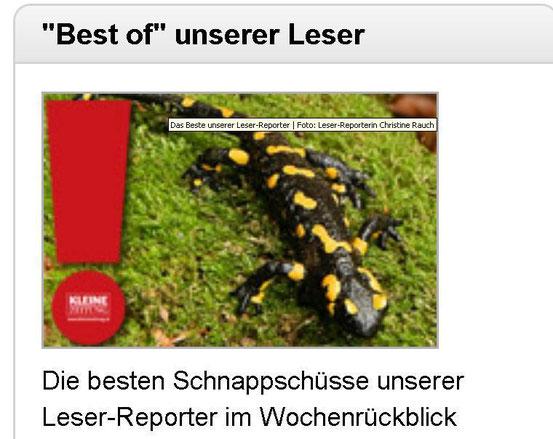 13.12.2011 Kleine Zeitung - Online