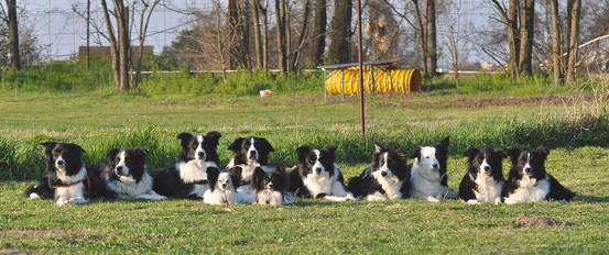 hinten: Dean, Jay, Cody, Magic, Suri, Maggie, Amy, Eve, Lexi vorne: Brenda, Bucksi