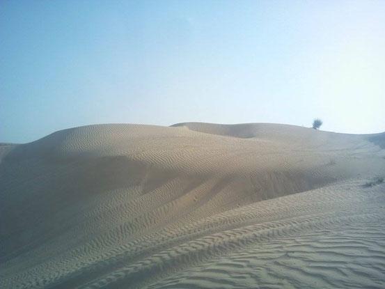 ... und noch mehr Wüste