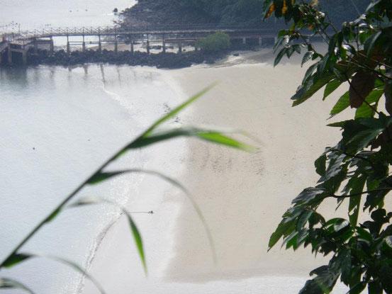 Die Naturwissenschaft lehrt uns, dass Wasser, Sand, Gene, Lebewesen, alles nur aus mikroskopischen Entitäten besteht, die kausale Rollen ausführen.
